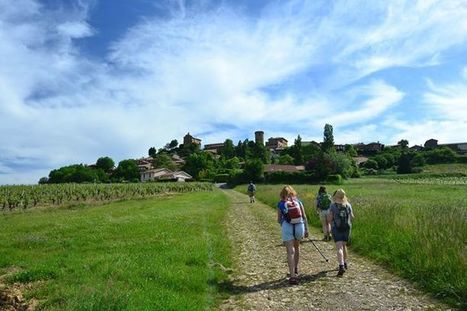 Photos from High Point Holidays's post - High Point Holidays | Facebook | Beaujolais | Scoop.it