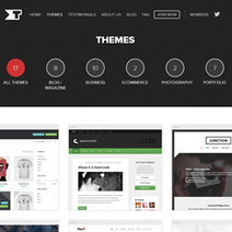 Looking for the best WordPress themes | Blog | Scoop.it