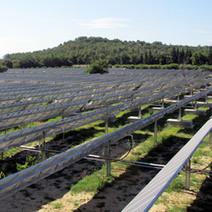 Trackers solaires : Exosun poursuit sa collaboration avec CNR | CLEAN ENERGY (Production, Storage, Smart Grid,...) | Scoop.it