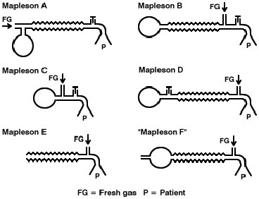 Anesthesia breathing circuits | Anesthesia Updates | Scoop.it