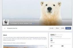 DSFI » Actu Numérique : Facebook dévoile un outil pour aider les ONG à lever des fonds | UseNum - Association | Scoop.it