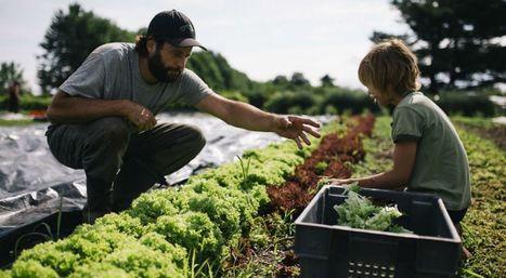 Cette toute petite ferme réussit le pari de nourrir 140 familles en bio | Tout le web | Scoop.it