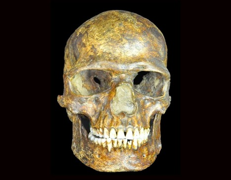 Ancient DNA shows earliest European genomes weathered the Ice Age | Histoire et Archéologie | Scoop.it