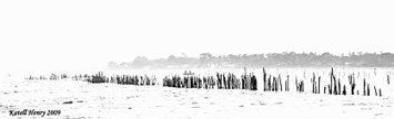 Dans les brumes du Bassin d'Arcachon | Le Bassin d'Arcachon | Scoop.it