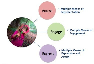 Discover the Learner in Every Child | Personalize Learning (#plearnchat) | Scoop.it
