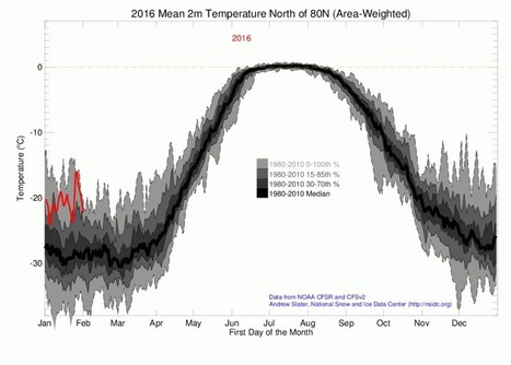 Sea Ice Death Spiral Continues -- Start of 2016 Sees Arctic Ocean Ice Hitting New Record Lows | GarryRogers Biosphere News | Scoop.it