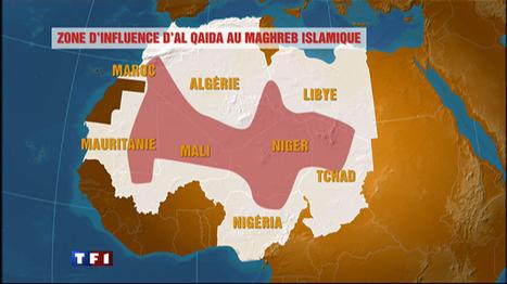 Il y a désormais 15 otages français dans le monde, tous en Afrique ... | Thierry DOL | Scoop.it