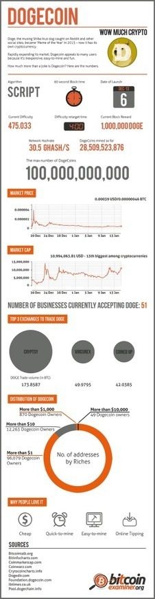 Dogecoin vs. Bitcoin [INFOGRAPHIC] | Virtual Currency | Scoop.it