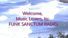 Online Electronic/dance Radio Station - FUNK SANCTUM RADIO - Powered by Live365.com   Share Some Love Today   Scoop.it