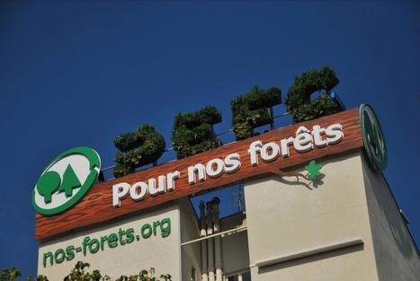 Un affichage écologique qui s'auto-alimente pour promouvoir la gestion durable de la forêt - Efficycle | Innovation dans l'Immobilier, le BTP, la Ville, le Cadre de vie, l'Environnement... | Scoop.it