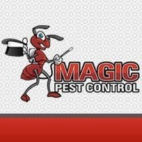 Magic Pest Control | Termite Control Services in Casa Grande | Scoop.it
