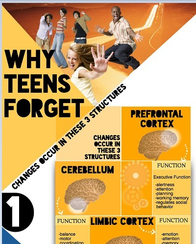 Why is My Teen So Forgetful? | Cool School Ideas | Scoop.it