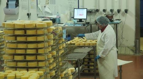 La fromagerie Graindorge serait à vendre | The Voice of Cheese | Scoop.it