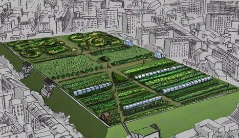 Sur les toits de Paris... des fermes | Better world | Scoop.it