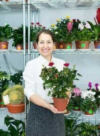 Topfrosen, Minirosen im Garten auspflanzen – geht das? | Haussanierung - mein neues Haus | Scoop.it