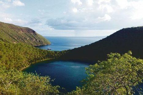Galápagossaarilla voisi edelleen metsästää kuin Charles Darwin – hatulla | Biologygeography teaching | Scoop.it
