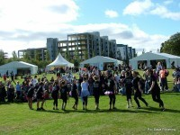 Forthquarter Festival cancelled | Today's Edinburgh News | Scoop.it