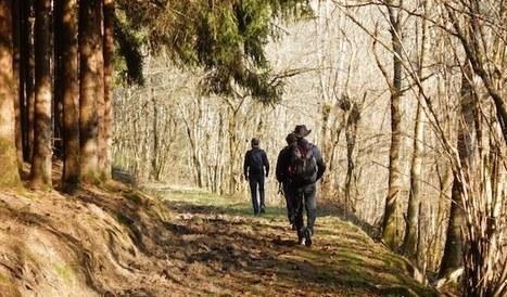 JDOC - Journée Découverte Outdoor Coaching © | Le Cap Coaching - Coaching de dirigeants, d'entrepreneurs et d'organisations en Alsace | Le Cap Coaching | Scoop.it