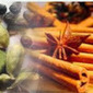 Are you suffering from piles? | Ayurvedic Treatments | Scoop.it