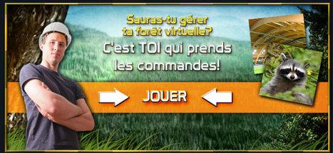 FORESTIA: un jeu de simulation et de stratégie où tu aménages ta forêt! | Remue-méninges FLE | Scoop.it