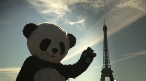 Les pandas cherchent leurs Pambassadeurs à Paris | streetmarketing | Scoop.it