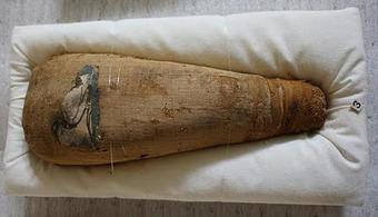 Ushebtis Egipcios - Blog: Científicos investigan porqué alimentaban a los ibis en la momificación   Égypt-actus   Scoop.it