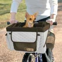 Top Five Dog Carriers for Bikes   Affordable Mickey Mouse Clubhouse Sets For Toddlers   Scoop.it