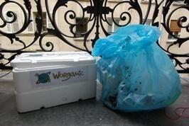 """Comment construire son Lombricomposteur """"fait maison"""" ? - Le WorgaBlog   Papa heureux et éducation   Scoop.it"""