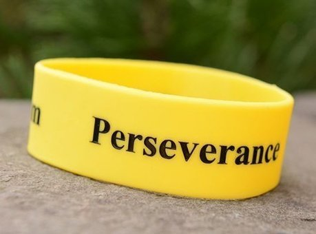 Character Education Traits - Perseverance - The Will to Keep Going ... | Leading with Character | Scoop.it