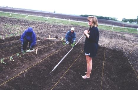 Maryland Rural Enterprise Development Center   Extension Works the Food System   Scoop.it