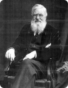 Alfred Russel Wallace (naturalista inglês)   Natura educa   Scoop.it