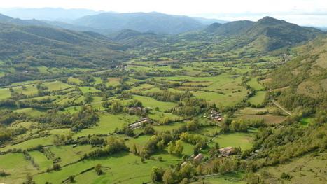 À quoi ressemblera l'agroforesterie dedemain?(3) | Actualités de l'environnement | Scoop.it