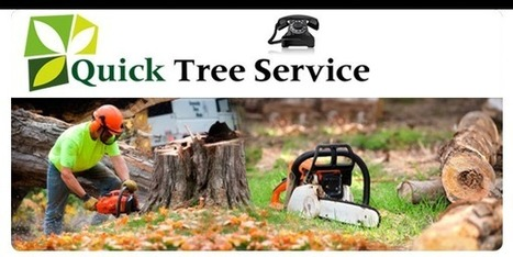 Lawrenceville Tree Service, Stump Grinding for Lawrenceville, GA | Tree Service Lawrenceville | Scoop.it