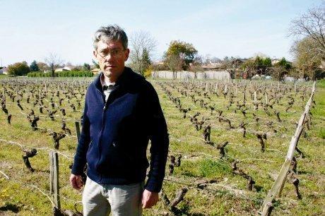 "Les crus artisans du Médoc percent à l'export | ""Viticulture en gironde"" | Scoop.it"