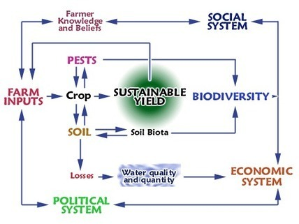 UNESCO | Teaching and Learning for a Sustainable Future | Module 15: Sustainable agriculture | Technology within the Primary Classroom | Scoop.it