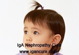How to Lower Creatinine 2.2 for Nephrotic Syndrome Patients_IGA Cure   igancure.com   Scoop.it