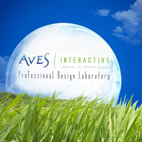 Profesyonel Web Tasarım Ajansı | Web Tasarim Grafik Tasarim ve Seo Hizmetleri - Aves Interactive | Scoop.it