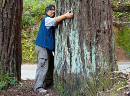 Tree Hugging Now Scientifically Validated - Uplift | Hot off the press- Social Media | Scoop.it