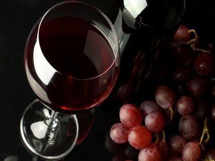 Vino rojo: los pros y los contras   Todo sobre vinos   Scoop.it