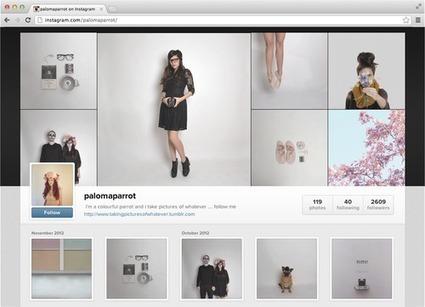 Le marketing par l'image sur les réseaux sociaux | Marketing, e-marketing, digital marketing, web 2.0, e-commerce, innovations | Scoop.it