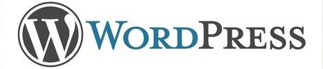 How A WordPress Website Will Help Your Business | Yellow Bridge Interactive | Scoop.it