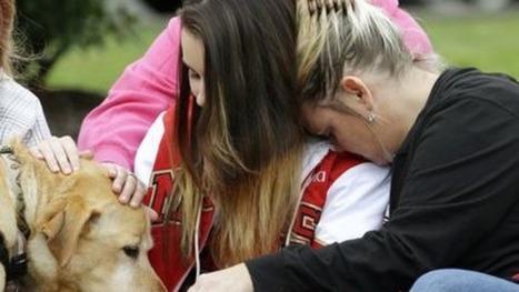 Seattle School Shooting Gunman Was Homecoming Royalty | Digital-News on Scoop.it today | Scoop.it