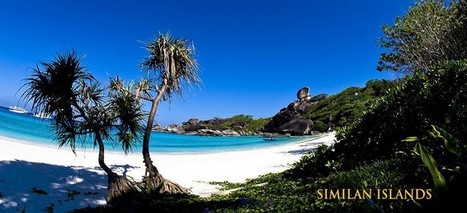 4 Reasons Why Similan Diving Safaris are the Best Way to Dive in Thailand | Water Boats | Scoop.it