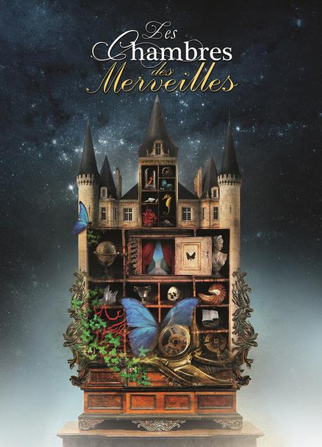 Du 22 octobre au 26 février. Exposition au Palais jacques-Coeur : Les Chambres des Merveilles | agenda culturel | Scoop.it