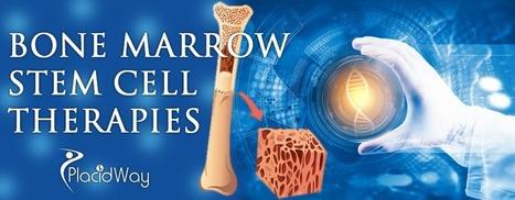 Bone Marrow Stem Cell Transplant Cost | Health and Wellness | Scoop.it