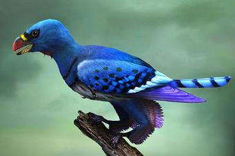 Τέχνης Σύμπαν και Φιλολογία: Τα πρώτα πουλιά είχαν επιπλέον δύο φτερούγες, Early birds had four wings, not two, study reports | Τέχνης Σύμπαν και Φιλολογία | Scoop.it
