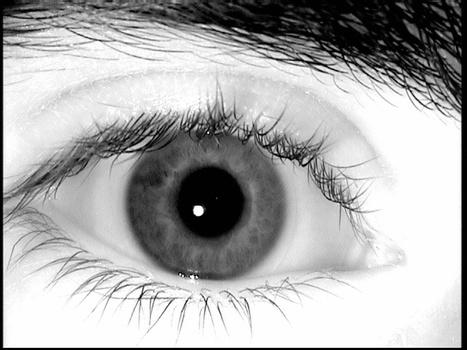Reverse-Engineered Irises Look So Real, They Fool Eye-Scanners   All Too Human   Scoop.it