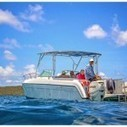 Palm Tree Charters Makes the Big Time! | News of St. John | St Thomas Boat Rental | Scoop.it