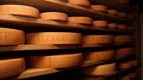 Les fromages dans le viseur des Etats-Unis - Agro Media | Actualité de l'Industrie Agroalimentaire | agro-media.fr | Scoop.it