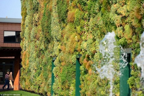 Wall-to-wall greenery: Stunning vertical garden brings the countryside to the city | Greener World | Scoop.it
